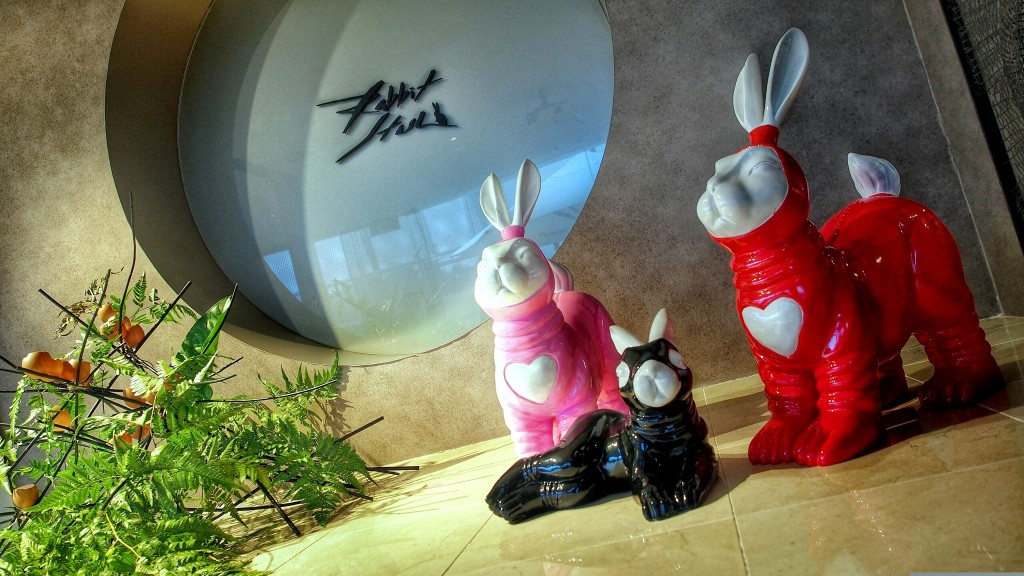 Asian rabbit review photo 871