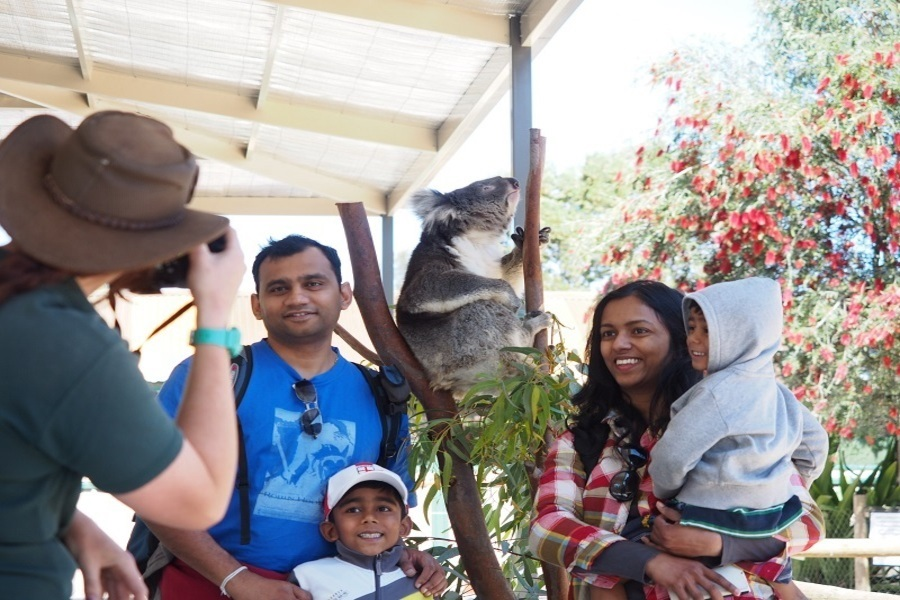 9-amazing-things-to-do-in-perth-before-the-year-ends-cavershem wildlife park.jpg