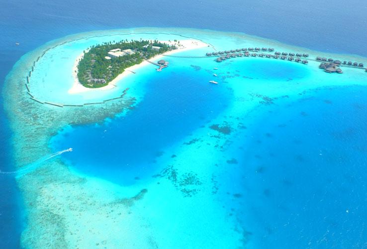 w maldives review