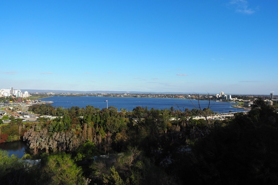 9-amazing-things-to-do-in-perth-before-the-year-ends-kings-park.jpg